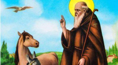 Comune di Rutigliano – Benedizione Animali Festa di Sant'Antonio Abate