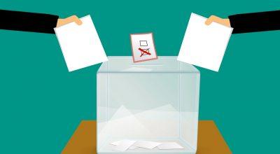 Elezioni degli Organi Collegiali a livello di Istituzione Scolastica A.S. 2021-2022